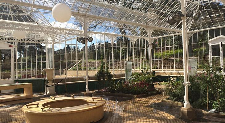 Wentworth Castle Conservatory Interior